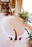 elegantt modernt för badkar Royaltyfri Foto