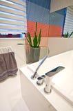 elegantt modernt för badrum royaltyfria foton