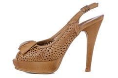 elegantt s shoes kvinnor royaltyfri foto