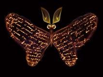 Eleganz des Schmetterlinges Stockbild
