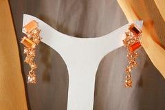 Eleganz Earings lizenzfreie stockfotografie
