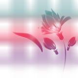 Eleganz romantisches Innersymbol auf einem warmen Hintergrund Lizenzfreie Stockfotografie