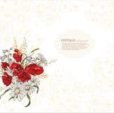 Eleganzhintergrund mit Mohnblumeblumen Stockbilder