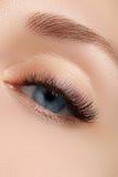 Eleganznahaufnahme des schönen weiblichen Auges mit Modelidschatten und -Eyeliner Makroschuß des schönen blauen Auges der Frau Stockfoto