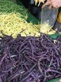 Elegir hilo en el mercado local de los granjeros fotografía de archivo libre de regalías