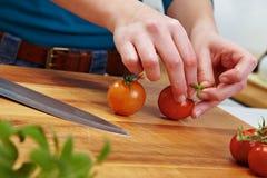 Elegir los tomates Imagen de archivo libre de regalías