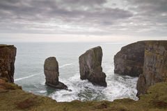 Elegug Stacks, Pembrokeshire, Wales Royalty Free Stock Images