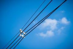 Elektriciteitskabel met een kabel separater Royalty-vrije Stock Foto's