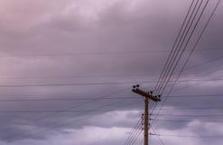 Elektriciteitspool en lijnen Stock Foto