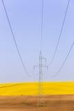 Elektriciteitspowerlines over kleurrijke raapzaadgebieden royalty-vrije stock foto