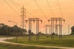 Elektriciteitspylonen en Zonsondergang Stock Fotografie