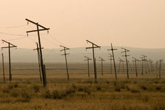 Elektriciteitspylonen in weide, Mongolië Stock Afbeeldingen