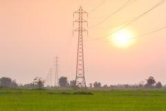 Elektricitetsöverföringspylon i fältet på solnedgång Royaltyfri Fotografi
