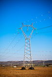 Elektricitetsmaktpyloner på en härlig bygd Arkivbilder
