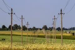 Elektricitetspoler och trådar i lantligt fält Royaltyfri Bild