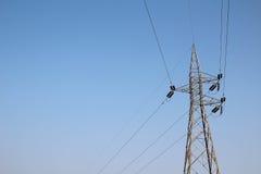 Elektricitetspylon på blå himmel Fotografering för Bildbyråer