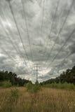 Elektricitetspyloner i fält med molnig himmel Royaltyfri Foto