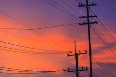 Elektricitetsstolpe i afton Arkivfoto