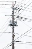Elektricitetsstolpe på Japan Arkivbilder
