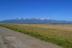 Elektricka hermoso agradable blanco rojo de la hierba verde de las montañas Fotografía de archivo libre de regalías