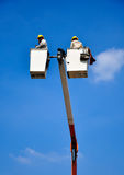 elektrikerreparationen lines ström Fotografering för Bildbyråer