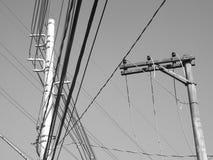 Elektrische Drähte Stockbilder