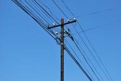 Elektrische Drähte Lizenzfreies Stockfoto