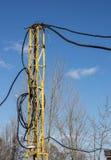 Elektrische Drähte vorübergehend gesetzt auf die Unterstützung Lizenzfreie Stockfotos