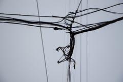 Elektrische draden Stock Foto's