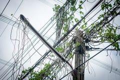 Elektrische en ingewikkelde draden met groene klimop, elektrisch poolrisico royalty-vrije stock afbeelding