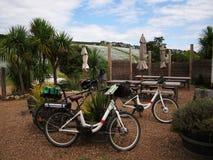 Elektrische Fahrräder auf Waiheke-Weinberg lizenzfreie stockbilder