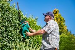 Elektrische Gartenarbeitwerkzeuge Ein Berufsgärtner schneidet eine Hecke mit einer elektrischen Heckenschere Gartenarbeit und Tät stockbild