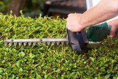 Elektrische Gartenscheren Lizenzfreie Stockbilder