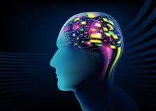 Elektrische hersenenactiviteit in een menselijk hoofd Stock Foto's