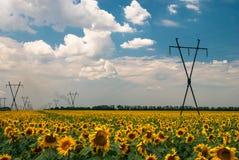 Elektrische leiding Royalty-vrije Stock Foto's