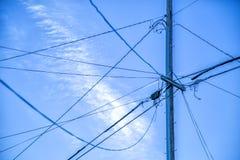 Elektrische Leitungen Stockfoto