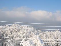 Elektrische lijnen in een zonnige berg Stock Afbeelding