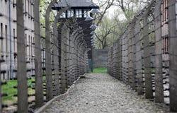 Elektrische omheining in vroeger Naziconcentratiekamp Auschwitz I Stock Foto