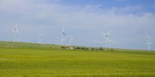 Elektrische Turbinen des Wind-Bauernhofes Stockfotos