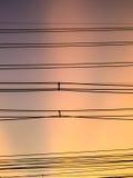 Elektrische Zeile Lizenzfreie Stockfotos