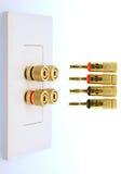 Elektrischer Bolzen der Wandplatte Stockfoto