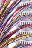 Elektrischer Draht und Platte benutzt in der Telekommunikation und im Computernetzwerk stockbilder