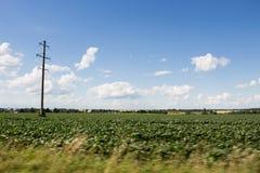 Elektrischer Pfosten und grünes Feld Stockfotografie