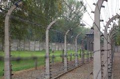 Elektrischer Zaun des Stacheldrahts Lizenzfreie Stockbilder