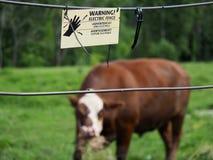 Elektrischer Zaun und Warnzeichen stockfoto