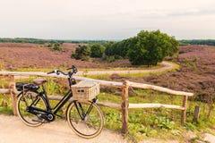 Elektrisk cykel med korgen i holländsk nationalpark Veluwen fotografering för bildbyråer