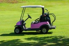 Elektrisk golfbarnvagn på farleden Royaltyfri Foto