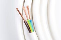 Elektrisk kabel med tre isolerade ledare Royaltyfri Foto