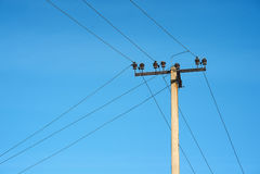 Elektrisk konkret pol på blå himmel Fotografering för Bildbyråer
