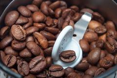 Elektrisk molarmaskin för makro med kaffebönor Arkivfoto